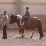 11cathorse007-reitschule